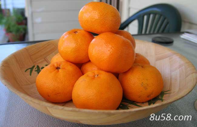陈皮是橘子皮吗?