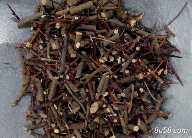 皂角刺树的种植密度是多少?