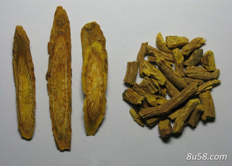 黄芩根腐病有哪些危害?如何防治?
