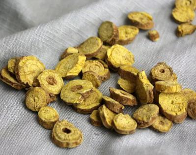 黄芩种子的发芽率是多少?