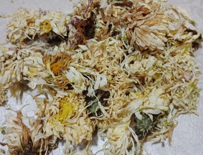 菊花白粉病有什么症状?如何防治?