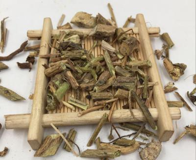 白毛藤的种植技术