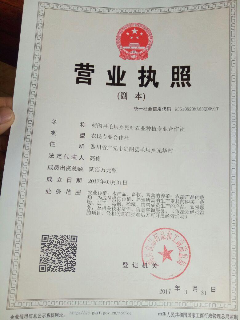 剑阁县毛坝乡民旺种植专业合作社