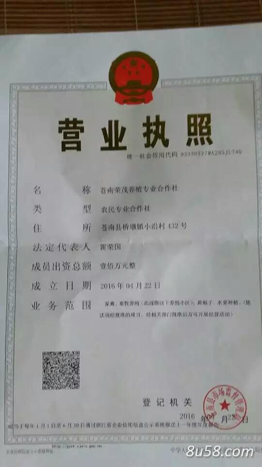 苍南荣茂养殖专业合作社