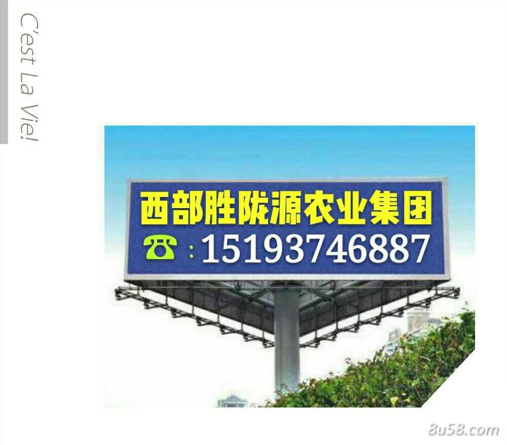 甘肃省红花产业协会