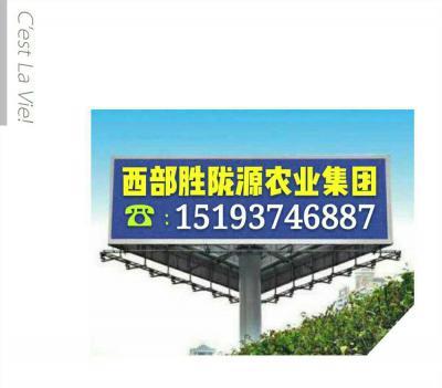 甘肃省中药材红花产业协会
