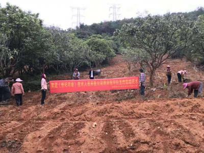 安溪创纪农业开发有限公司