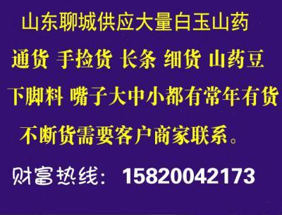 莘县景禾山药种植专业合作社