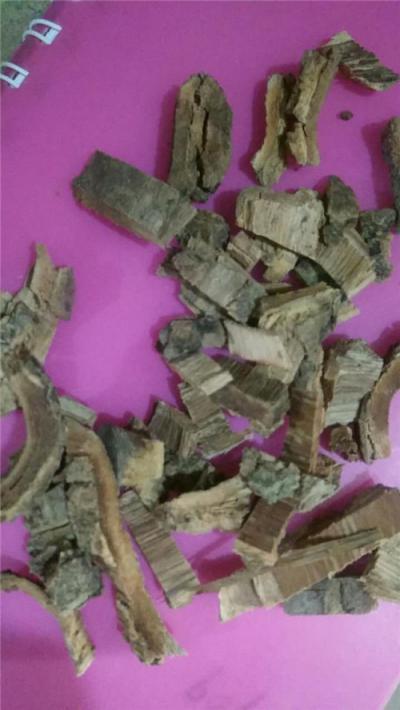 白杨皮产地价格批发零售哪里能买到白杨皮