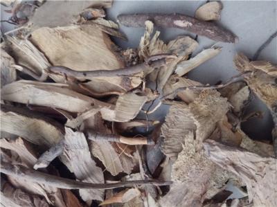 茶树根产地价格批发零售