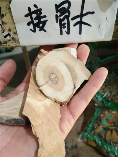 接骨木到哪里买哪里能买到接骨木