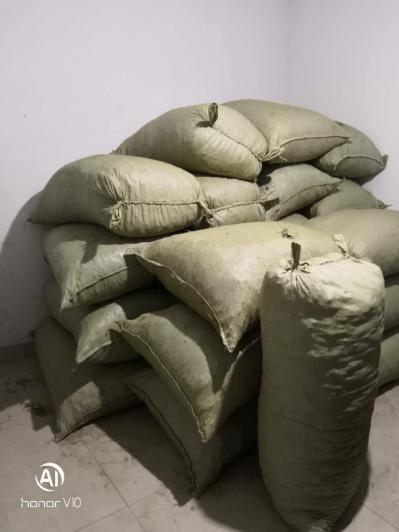 黄连今年新货2到3吨