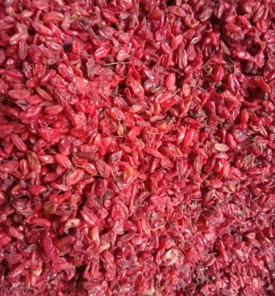 山茱萸肉出售