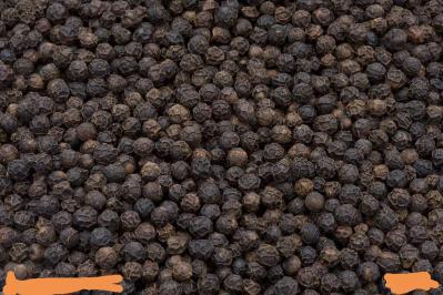 越南当季新鲜黑胡椒