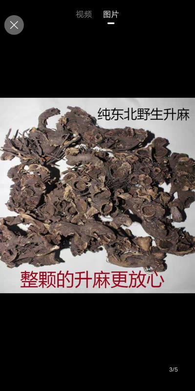 本人经营苍术升麻细辛5年有余现有野生升麻很多,地处辽宁省近年也想培植升麻有须求的和有经验的欢迎加入