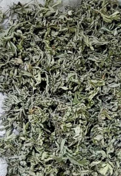 出售野生艾叶人工采摘无杂质,300公斤-600公斤