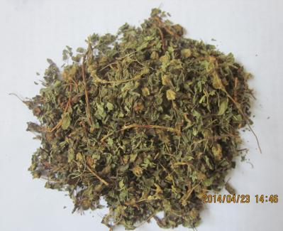 药王茶正品供应 药王茶哪里有卖
