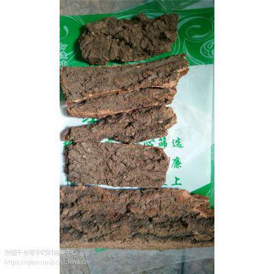 樟树皮哪里能买到 樟树皮供应