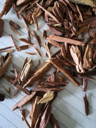 红豆杉哪里卖 红豆杉多少钱