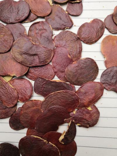 安国供应嗑瓜子中药材 冷背药材嗑瓜子