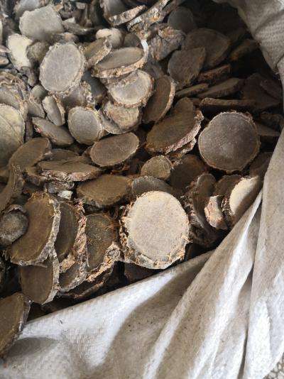 植物中药材莪术批发采购 安国莪术价格行情是多少