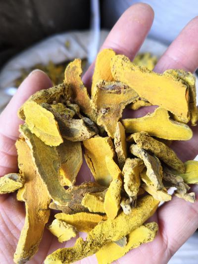 常用中药饮片姜黄 根茎类中药材姜黄批发