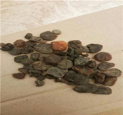 一件土贝母多少钱 哪里有卖土贝母的多少钱