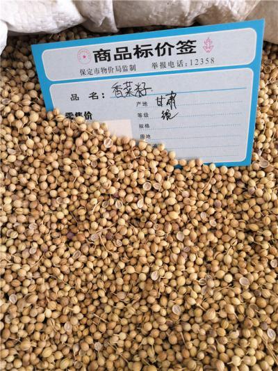 香菜籽多少钱一斤到哪里买香菜籽
