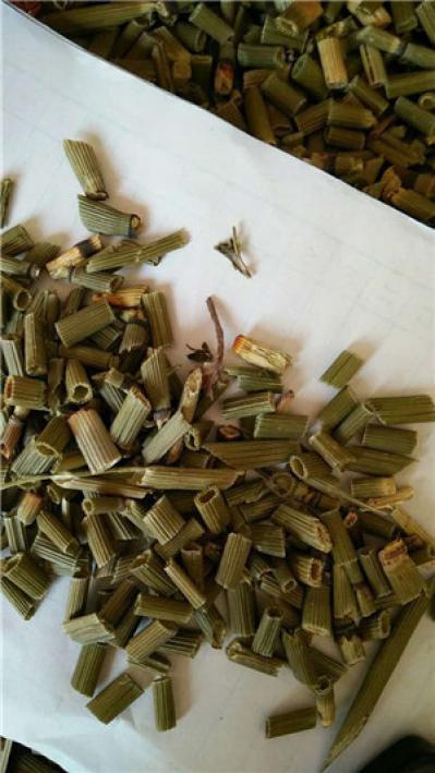 木贼到哪里买多少钱一斤