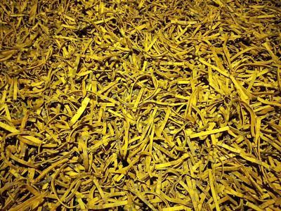 大量出售黄柏,有需要的老板可以联系我、大概两万斤左右