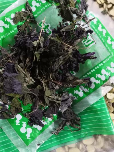 供应紫苏叶到哪里买紫苏叶多少钱一斤