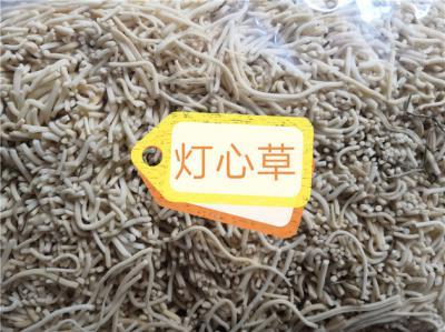 供应各种规格灯芯草灯芯草批发零售到哪里买灯芯草多少钱一斤