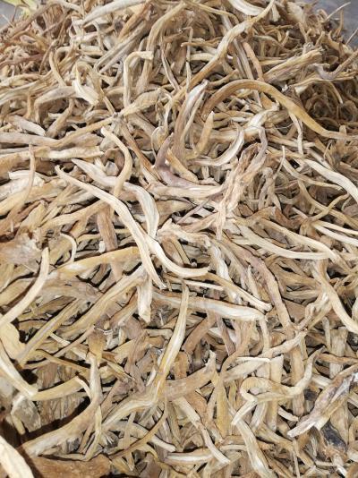野生采挖百部  自然晒干 无硫 品质保证