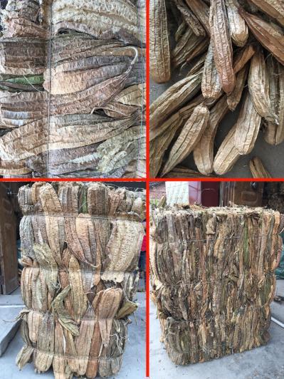 长年供应批发丝瓜络 农户种植天然丝瓜瓤未经加工干品 丝瓜壳  丝瓜筋 中药材