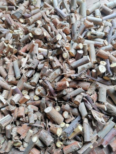 大量供应商~广西上林县十万大山原生态桑枝条药材