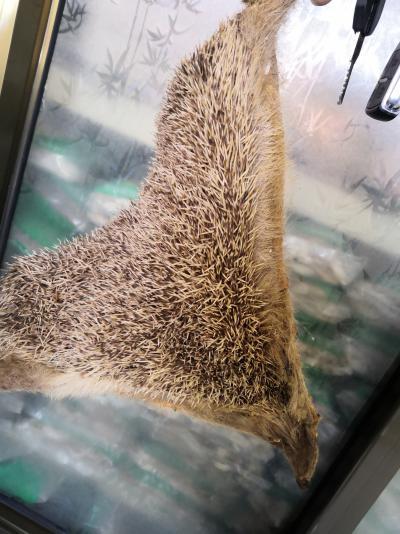 制刺猬皮一斤多少钱动物中药材制刺猬皮产地