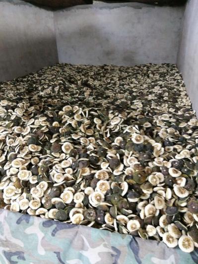 重庆江津干枳壳大量供应有30吨