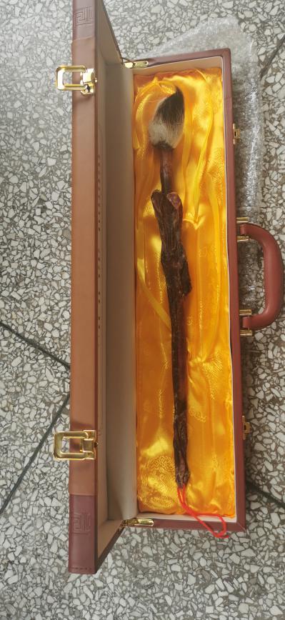 正品鹿鞭多少钱 鹿鞭礼盒出售