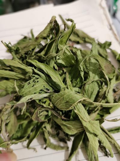 甜叶菊一斤多少钱 哪里有卖甜叶菊的