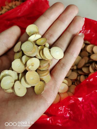 大量桑枝供应一手货源