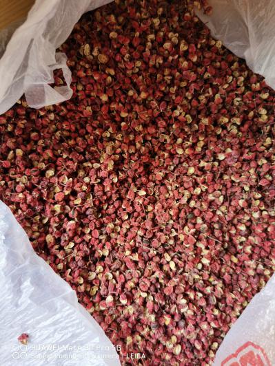干红花椒供应