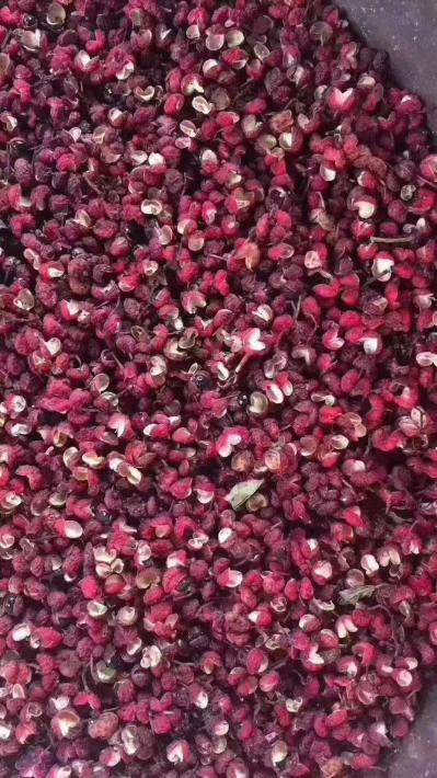 长期大量提供优质汉源花椒