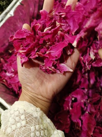 杜鹃花一斤多少钱 哪里能买到杜鹃花 安国花草茶批发