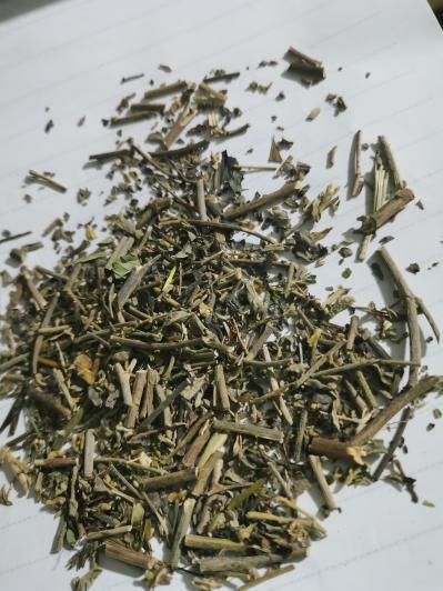 百里香是什么药材 百里香的作用是什么