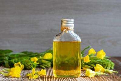 月见草油哪里能买到 月见草油一斤多少钱