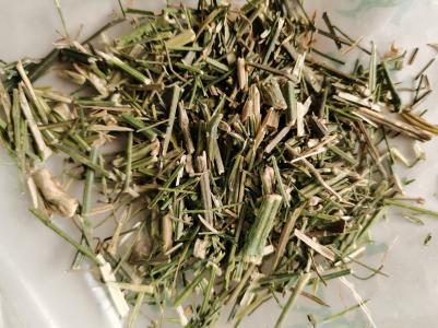 中草药穿心莲一斤多少钱 安国哪里卖穿心莲药材