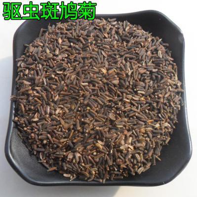供应大货 中药材 斑鸠菊 驱虫斑鸠菊 代加工超细粉