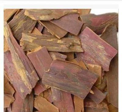 中药材红豆杉叶 红豆杉根的功效批发价格