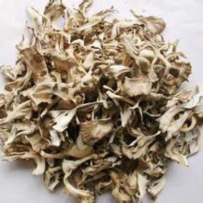 正宗灰树花哪里有卖的 好的灰树花多少钱一斤啊 哪里有卖灰树花的