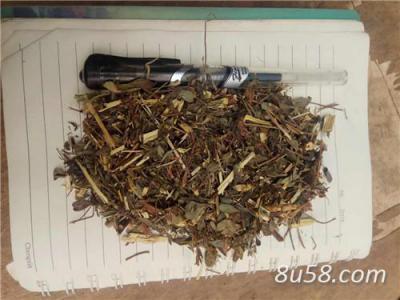 供应植物中药材胡枝子(价格)胡枝子别名